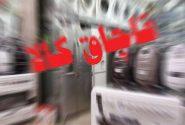 کشف ۲۳ میلیون ریال کالای قاچاق در زرینشهر