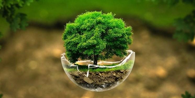 تصمیمهای اشتباهی که «محیط زیستی ترین دولت» را به فنا داد